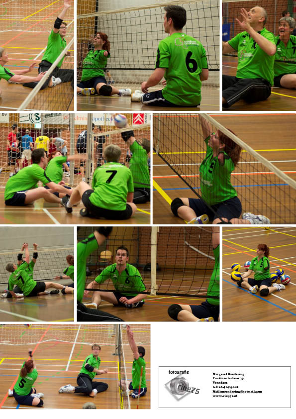Zitvolleybal in the picture